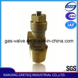 China Manufacture QF-15A Acetylene Cylinder Valve in Lower Price