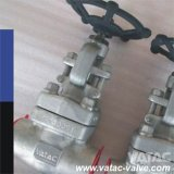 F304, F304L, F316, F316L Forged Stainless Steel Gate Valve