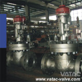 Gearbox Bolted Bonnet High Pressure Gate Valve