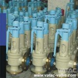 CS/Ss Cl600xcl300 Pressure Safety Relief Valve for Natural Gas