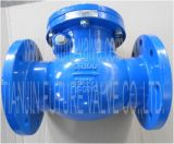DIN3352 F6 Pn16 Cast Iron Swing Type Check Valve (H44T-16)