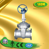 Carbon Steel Flange Gate Valve for Gear Operation