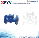 DIN/En Piston Lug Check Valve