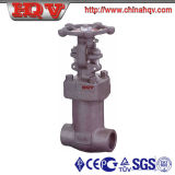 Bellow Forged Steel Globe Valve