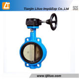Gear Box Cast Iron Wafer Double Stem Butterfly Valve