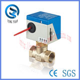 2-Way / 3-Way Brass Electric Control Motorised Ball Valve (BS-818)