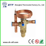 Two Way Brass Expansion Valve for Air Conditioner