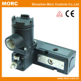 Pilot Piston Air Explosion Proof Solenoid Valve for Control Valve