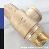 Pn10/Pn16/Pn25 Bronze Safety Valve with Thread Ends
