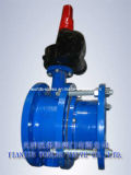 Expansion Flange Butterfly Valve (WDS)