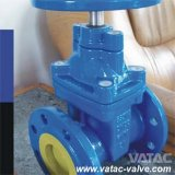 Non Rising Stem Gate Valve (NRS)