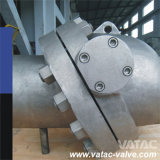 Cast Steel Ss304/Ss316 Tilted Disc Wafer Check Valve