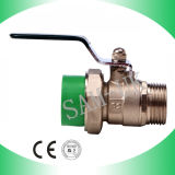 Male Brass Ball Valve (B26)