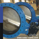 Cast Iron/Ductile Iron Flanged Butterfly Valve (D41)