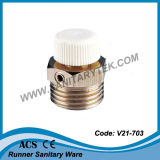 Manual Radiator Air Vent Bleed Plug Valve (V21-703)