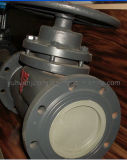 Cast Iron/Stainless Stain Plunger Gate Valve