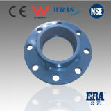 Plastic Flange PVC Ts Flange with Industral Quality