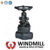 API Forged Steel Bolted Bonnet Gate Valve A105